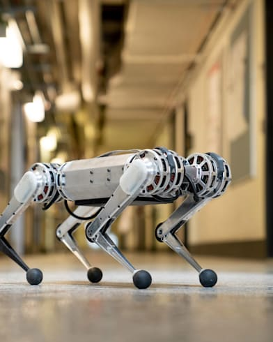 The innovative robots inspired by the animal kingdom