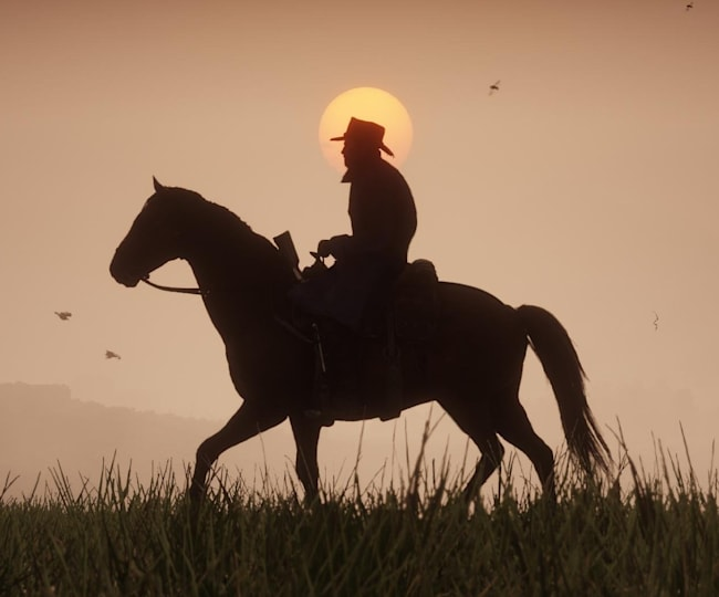 У Red Dead Redemption 2 є безліч справ