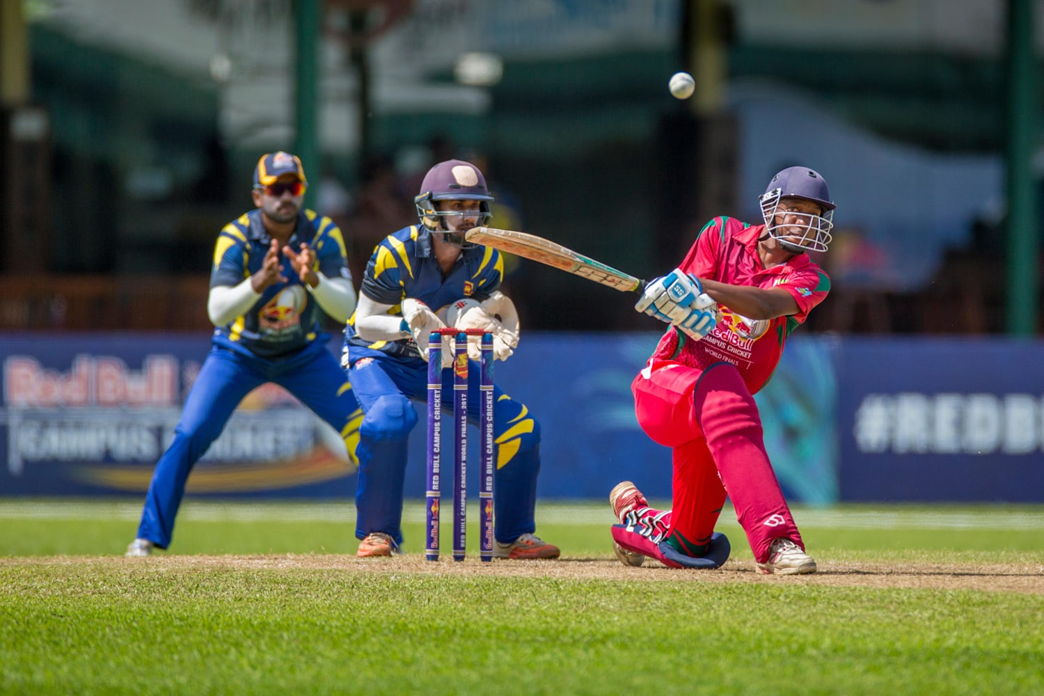 Cricket   Red Bull - Discover the latest content