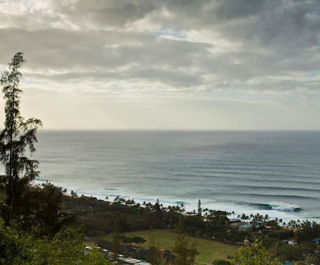 The North Shore From Above