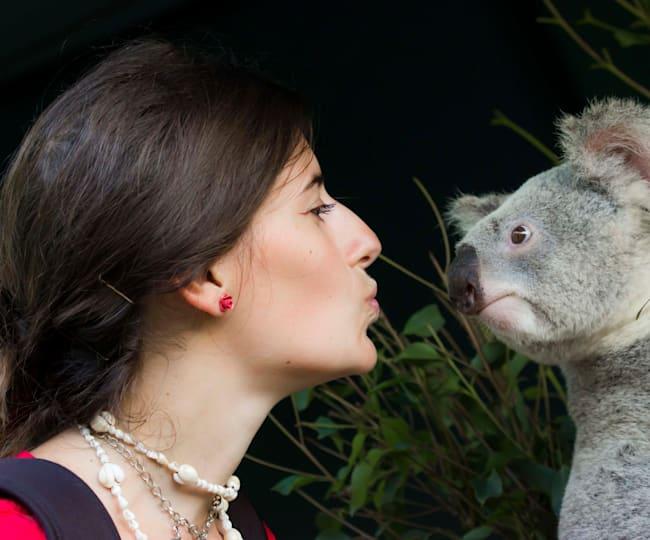 Martina all'Australia Zoo con un simpatico koala