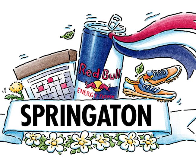Red Bull Springaton Badge