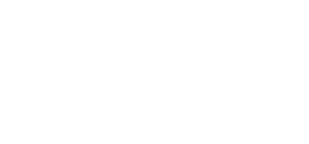 Wings for life logo - transparent