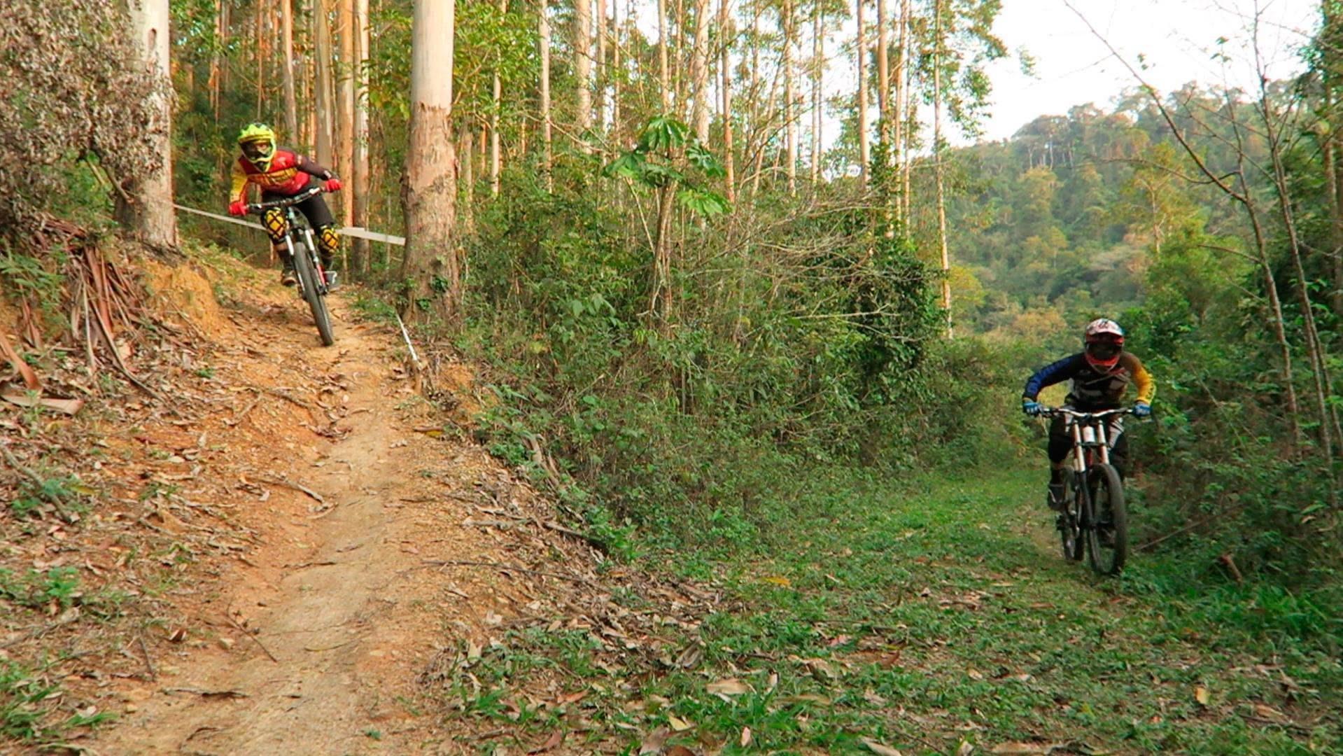 mtb singletrails fekete- erdő
